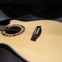 FOR SALE: Ibanez Acoustic Electric (Semi-Acoustic) Cut-away Guitar with Hard Case – Mint!!